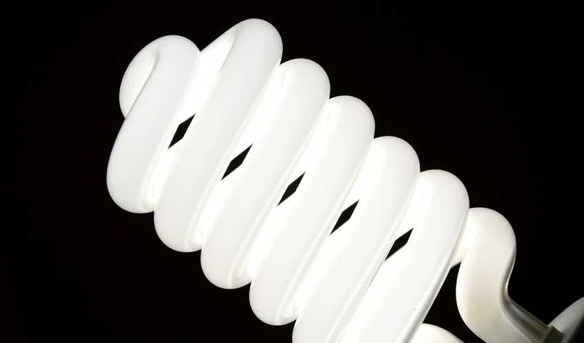 Full Spectrum Bulb